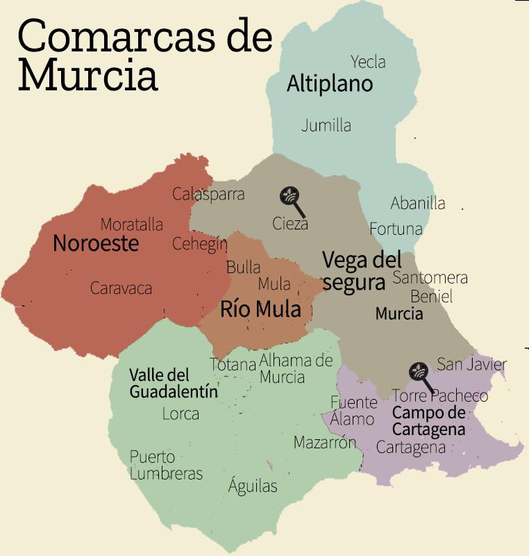 Mapa de Murcia por comarcas-Partners Campoés distribuidor en Cieza y Torre Pacheco