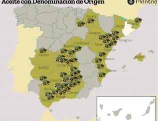Aceite de Oliva DO en España
