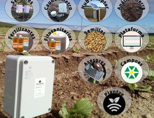 Campoés distribuidor de Plantae