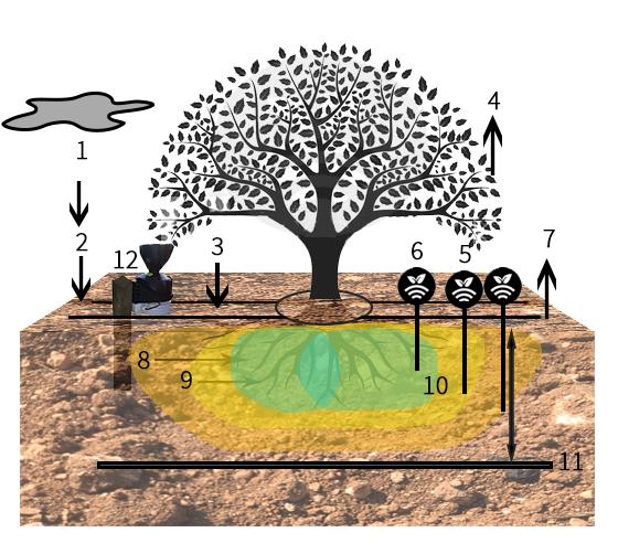 Esquema de riego con sondas y pluviómetro