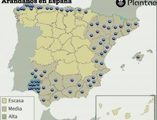 Mapa de España de arándanos